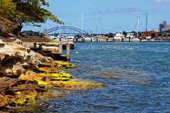 Sydney harbor rocky shore landscape Stock Photos