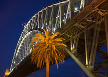Sydney Harbour Bridge. At night, with a palm tree in the foreground Royalty Free Stock Photo