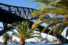 Sydney Harbour Bridge and City Skyline with Palms Royalty Free Stock Images
