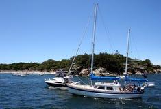 Sydney harbour jachtów Zdjęcie Royalty Free
