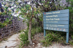 Sydney Harbour National Park - Blue Fish Track Stock Images