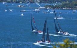 Sydney - Hobart Yacht Race 2014 Immagini Stock Libere da Diritti