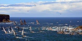 Sydney Hobart Yacht Race 2013 Lizenzfreie Stockfotografie