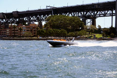 Sydney Jet Boat. Jet Boat in Sydney Harbour, pylons of the Sydney Harbour Bridge in background, Sydney, Australia Royalty Free Stock Photography