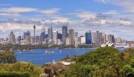 Sydney miasta dnia panorama od zoo Fotografia Royalty Free