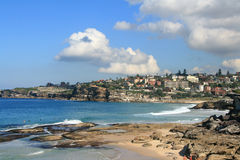 Sydney na plaży Fotografia Royalty Free