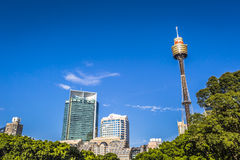 SYDNEY - OCTOBER 27: Sydney Tower on October 27, 2015 in Sydney,. Australia. Designed by Australian architect Donald Crone, plans for Sydney Tower were unveiled Stock Image