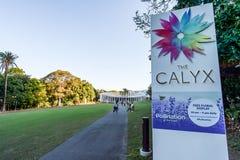 SYDNEY - Oktober 12: Blomfodret i Sydney Royal Botanic Garden på Oktober 12, 2017 i Sydney, Australien Arkivfoto
