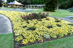 SYDNEY - Oktober 12: Sydney Royal Botanic Garden på Oktober 12, 2017 i Sydney Royaltyfri Bild
