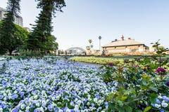 SYDNEY - Oktober 12: Sydney Royal Botanic Garden på Oktober 12, 2017 i Sydney Royaltyfria Bilder