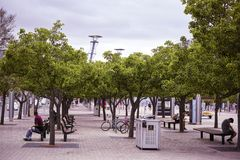 Sydney Olympic Park Railway Station public courtyard. With trees and bicycle parks and people sitting on benches. City square in Australia Stock Photography