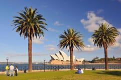 Sydney opera, Dawes punktu park z drzewkami palmowymi jako przedpole, Sydney Australia obraz stock