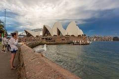 Sydney Opera House Fotografering för Bildbyråer