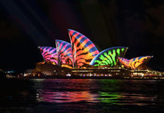 Sydney Opera House Animal stripes Stock Photography