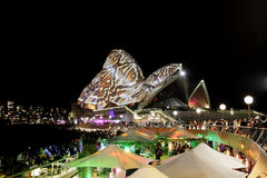 Sydney Opera House reptile snakeskin during Vivid  Royalty Free Stock Images