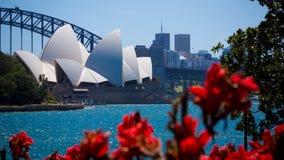 Sydney Opera House dans un jour ensoleillé Photos stock