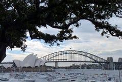 Sydney Opera House en de haven overbruggen de mening van de botanische tuin royalty-vrije stock fotografie