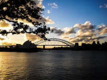 Sydney opera house in the evening time. Royalty Free Stock Images