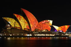 Sydney Opera House with festival lighting. The Sydney Opera House is illuminated by the artwork of music producer, Brian Eno, at the start of the Luminous Stock Photography