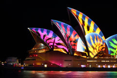 Sydney Opera House  stripes Royalty Free Stock Photos