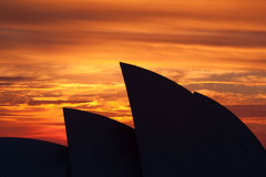 Sydney Opera House at Sunrise Stock Photography