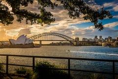 Sydney Opera House u. Hafen-Brücke Stockfotos