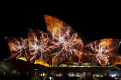 Sydney Opera House during Vivid festival 2014 Stock Photography