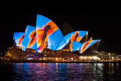 Sydney Opera House during Vivid festival 2013 Royalty Free Stock Images