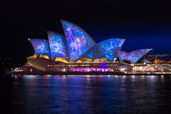 Sydney opera house vivid night life Royalty Free Stock Images