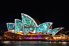 Sydney Opera House in Vivid Syndey 2014 Stock Images