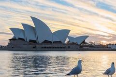 Sydney opera przy wschodem słońca w Sydney Australia Obraz Royalty Free