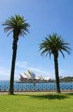 Sydney opery widok przez schronienie, pionowo Zdjęcia Royalty Free