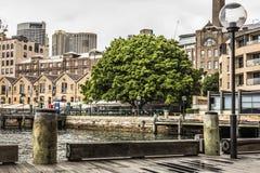 SYDNEY - 25 OTTOBRE: Lungomare di Ccircular Quay, pilastri a nuvoloso Fotografia Stock