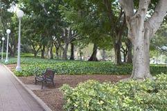 Sydney park Royalty Free Stock Image