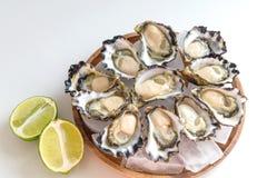 Sydney Rock Oyster. Freshly shucked Sydney Rock Oyster Stock Images