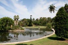Sydney Royal Botanical Garden, Australia Fotografia Stock Libera da Diritti