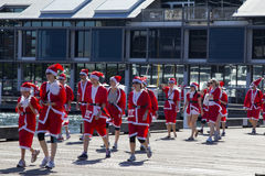 Sydney's Santas on a walk. Royalty Free Stock Photo