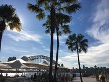 Sydney schronienia most przez drzewek palmowych Obraz Royalty Free