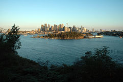Sydney skyline. Sydney view from a forest, photo taken before dusk, sydney tower and harbour bridge visible Stock Images