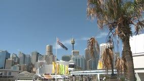 Sydney Skyline stock video