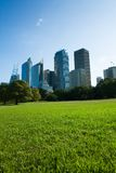 Sydney Skyline From The Park. Skyscrapers and blue sky fill the background behind beautiful green grass and trees. This photo was taken at the Royal Botanical