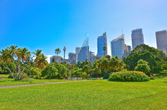Sydney skyline from Royal Botanic Gardens in Sydney Stock Image