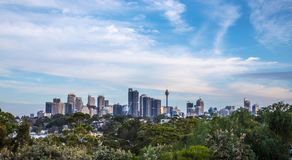 Sydney Skyline with trees in the foreground. Stock Photography