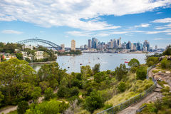 Sydney Skyline Waverton Peninsula Reserve Image stock