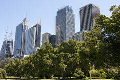 Sydney skyscrapers Royalty Free Stock Images