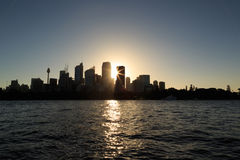 Sydney Skyscrapers Royalty Free Stock Image