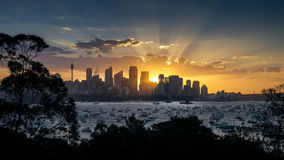 Sydney Sunset Stock Image