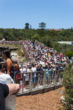 Sydney to Hobart race start. Crowds gather on the coast to watch the start of the Sydney to Hobart yacht race Royalty Free Stock Image