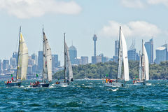 Sydney to Hobart yacht race 2014 Stock Photography