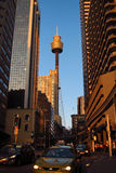 Sydney Tower. Peeking from behind buildings in a busy street Royalty Free Stock Photos